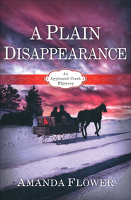 A Plain Disappearance cover