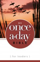 The NIV Once A Day Bible for Leaders cover
