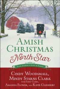 Amish Christmas at North Star cover 2