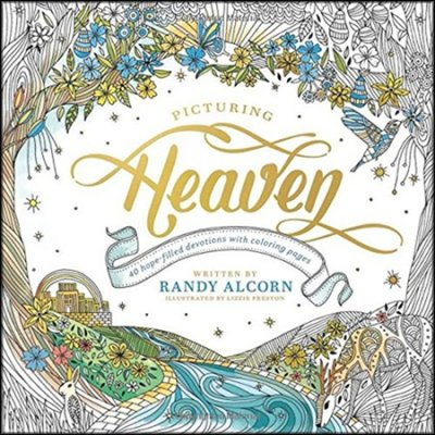 picturing heaven cover